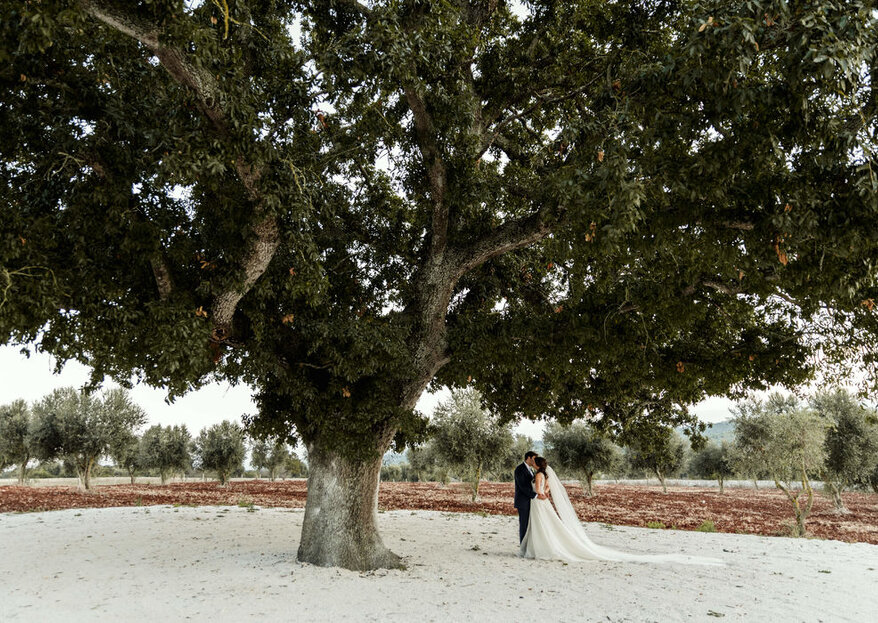 Masseria Grieco: Your Uniquely Apulian Wedding