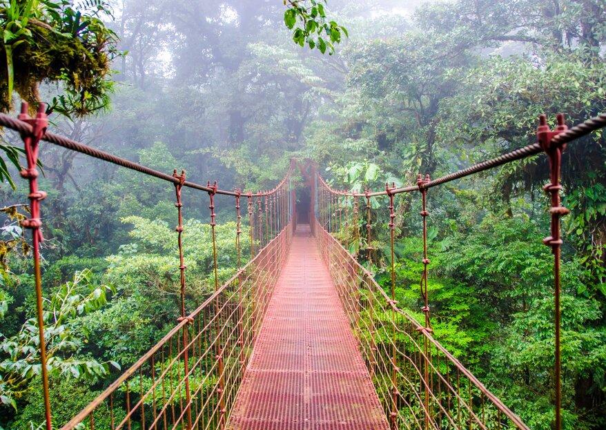Zankyou Travel: Launching Our New Solution to Honeymoon Travel