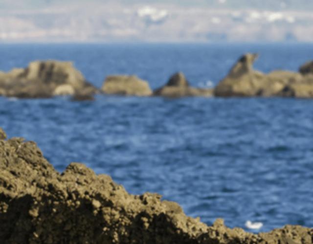 Providers in Baja California