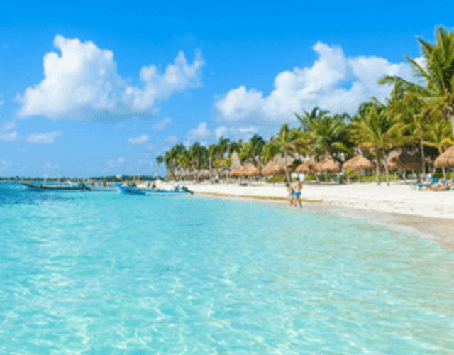 Providers in Quintana Roo - Riviera Maya