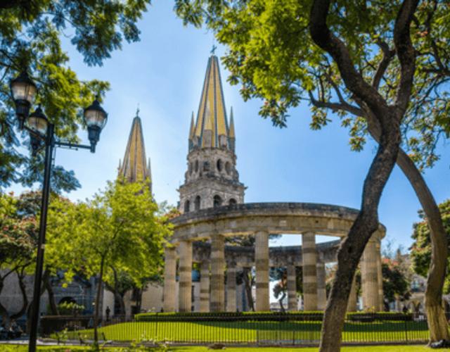Providers in Jalisco