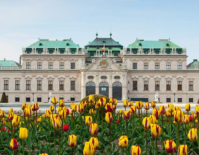 Providers in Wien