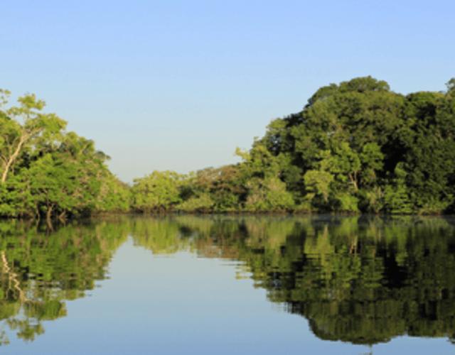 Providers in Amazonas